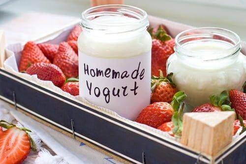 Update Homemade Yogurt