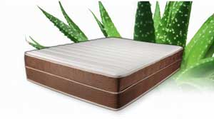 Brooklyn Bedding 14-Inch Aloe Alexis Latex Mattress Review