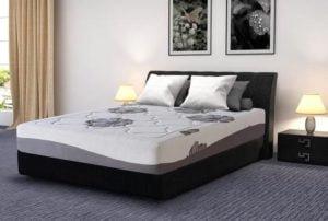 Olee Sleep Memory Foam Mattress Review