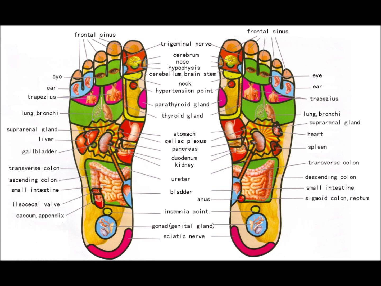 PointsOf Foot Reflexology